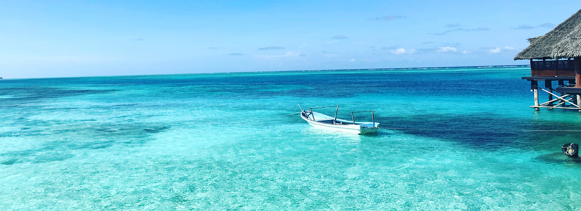 Zanzibar Transfer Services